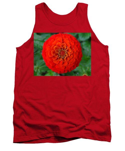 Want An Orange ? Tank Top