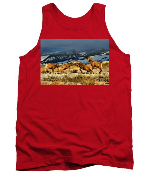 Tank Top featuring the photograph Wyoming Bighorn Brawl by Adam Jewell