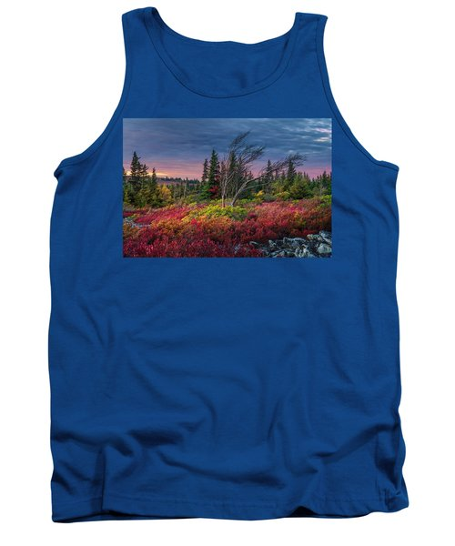 Dolly Sods Windswept Sunset Tank Top by Mary Almond