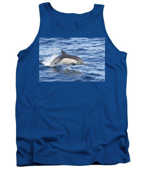 Dolphin At Play Tank Top