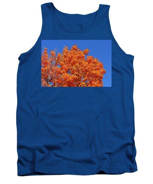 Fall Foliage Colors 19 Tank Top