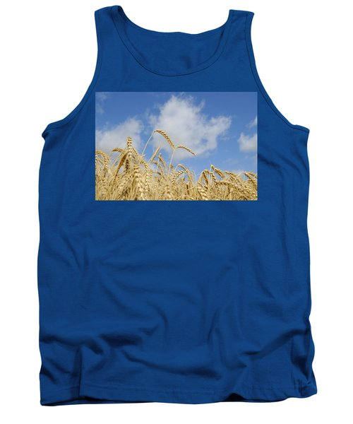 Field Of Wheat Tank Top