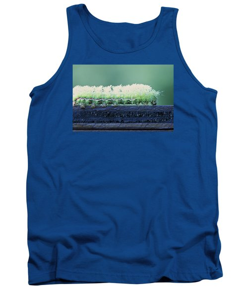 Tank Top featuring the photograph Fuzzy Caterpillar by Jane Eleanor Nicholas