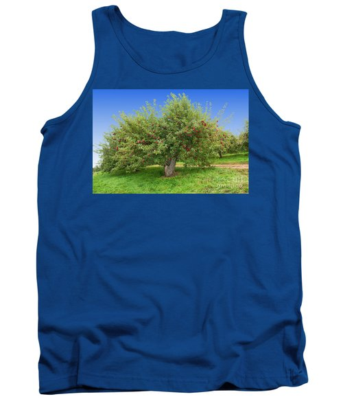 Large Apple Tree Tank Top by Anthony Sacco