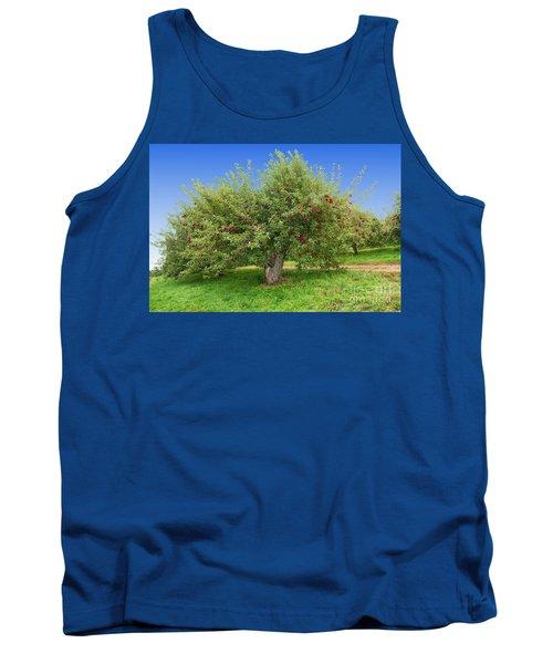 Large Apple Tree Tank Top