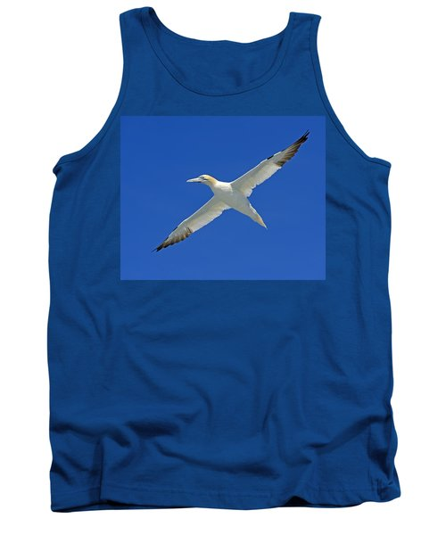 Northern Gannet Tank Top by Tony Beck