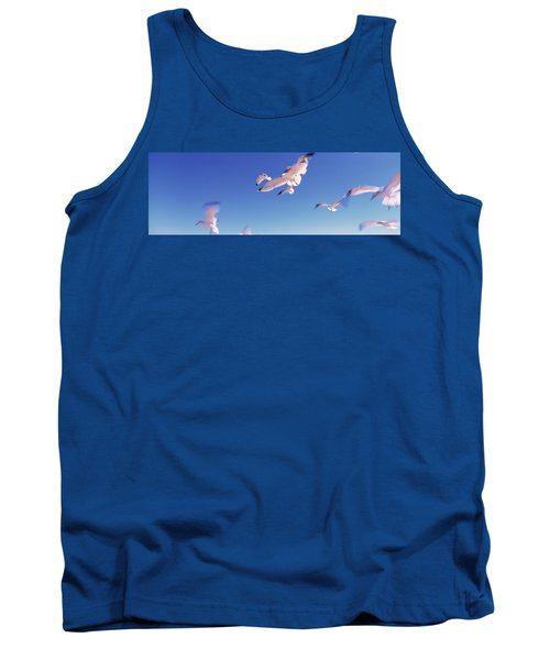 Seagulls Flying Along Route A1a Tank Top