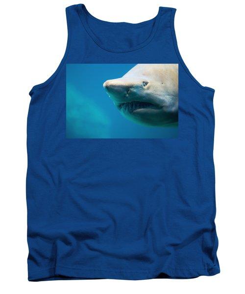 Shark Tank Top