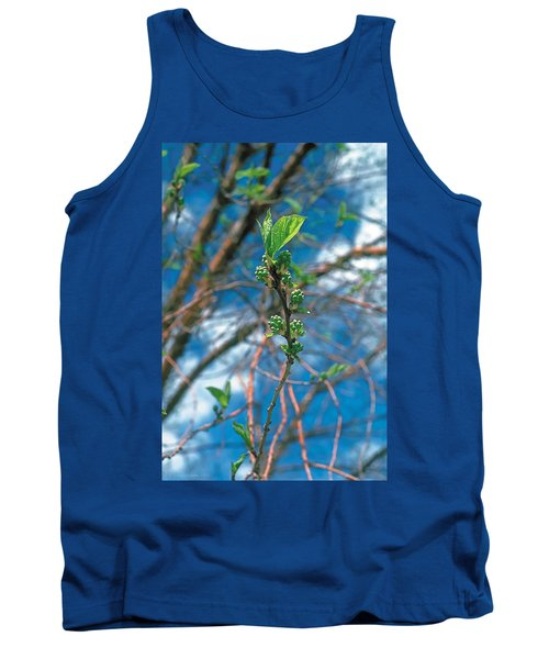 Spring Tank Top by Terry Reynoldson