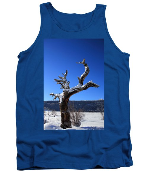 Winter In The Rockies Tank Top