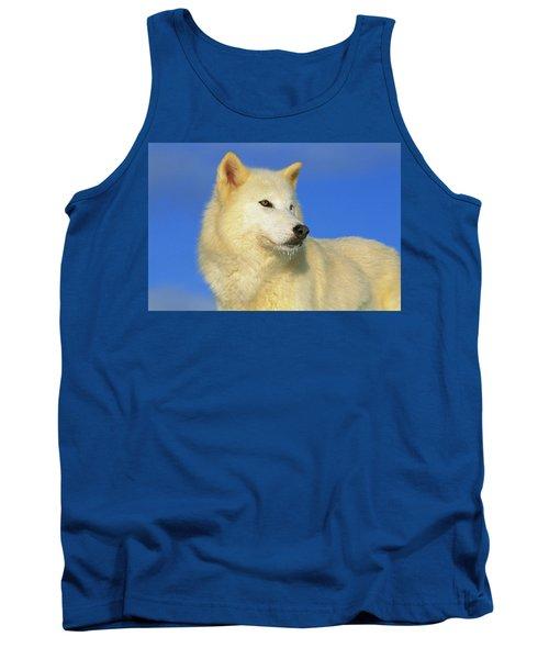 Arctic Wolf Canis Lupus Portrait Tank Top