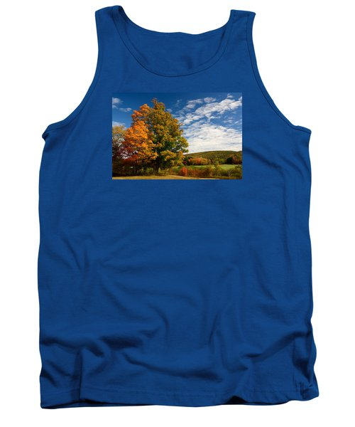Tank Top featuring the photograph Autumn Tree On The Windham Path by Nancy De Flon