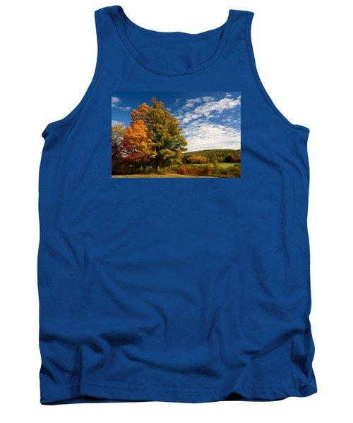 Autumn Tree On The Windham Path Tank Top by Nancy De Flon