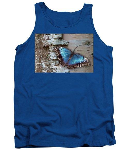 Blue Morpho Butterfly On White Birch Bark Tank Top by Patti Deters