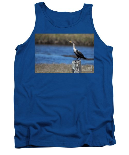 Double-crested Cormorant Tank Top