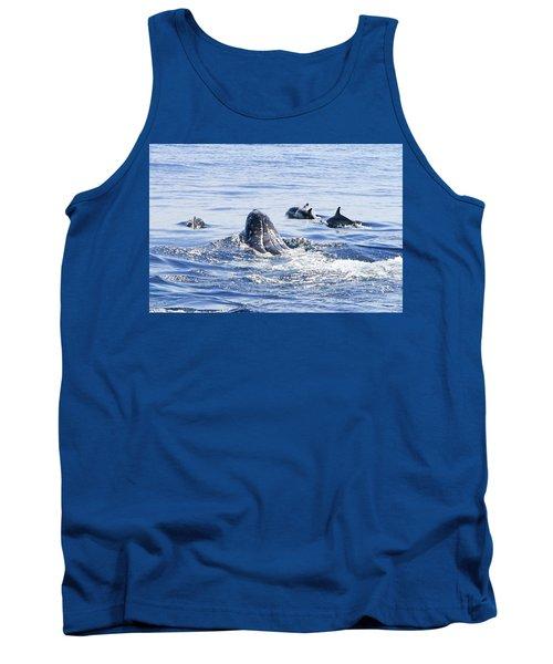 Grey Whale 1 Tank Top