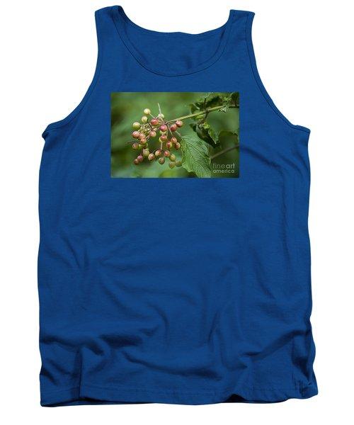 High Bush Cranberry 20120703_106a Tank Top by Tina Hopkins