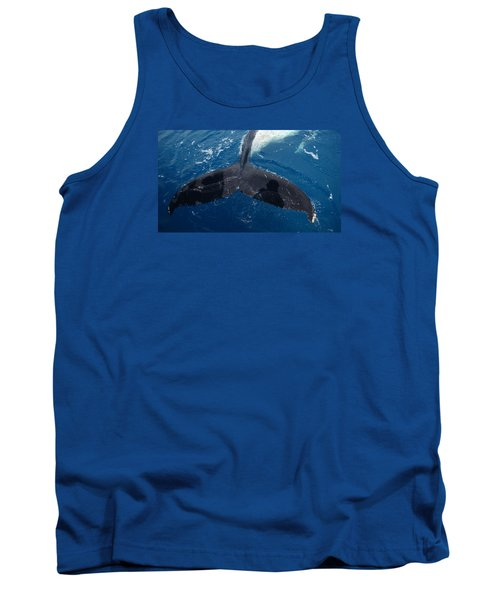 Humpback Whale Tail With Human Shadows Tank Top