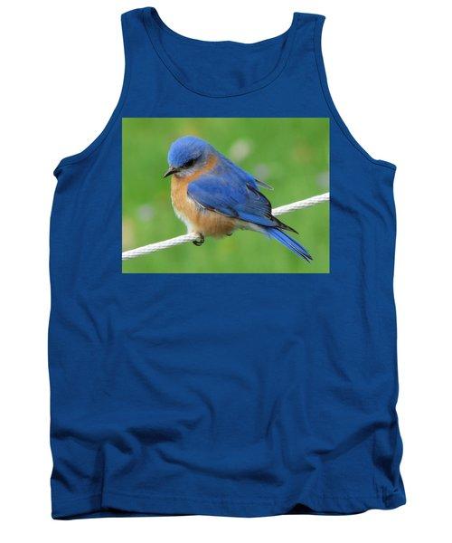 Intense Blue Bird Tank Top