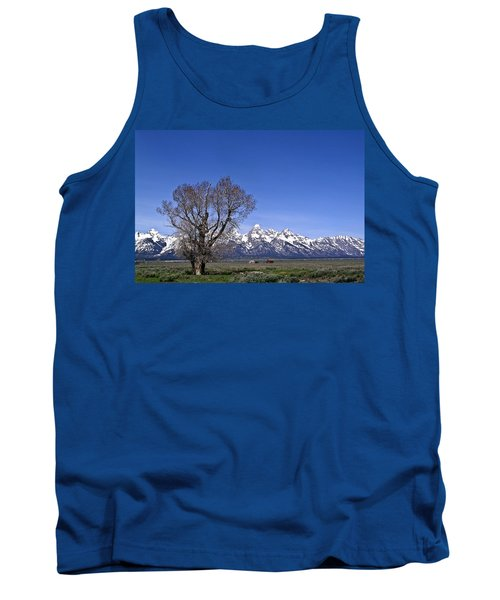 Lone Tree At Tetons Tank Top