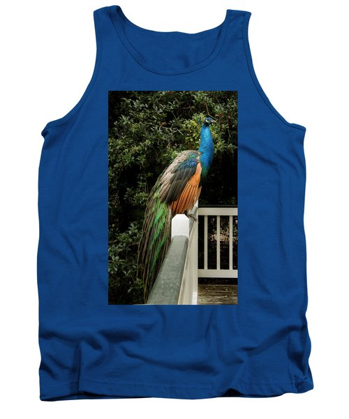Tank Top featuring the photograph Peacock On A Fence by Jean Noren