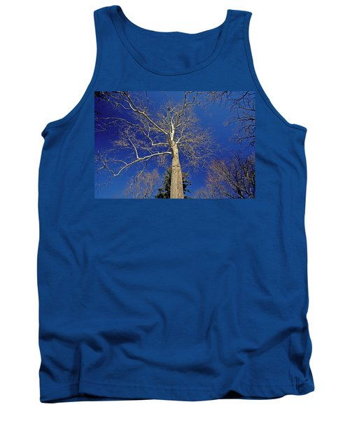 Tank Top featuring the photograph Reaching For The Sky by Suzanne Stout