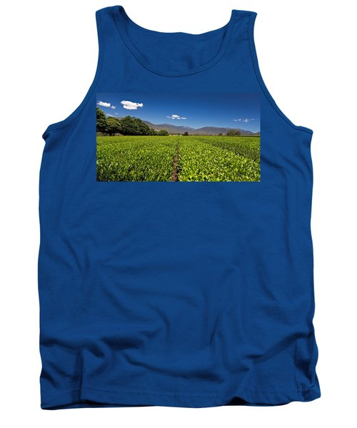 Ready For Harvest Tank Top