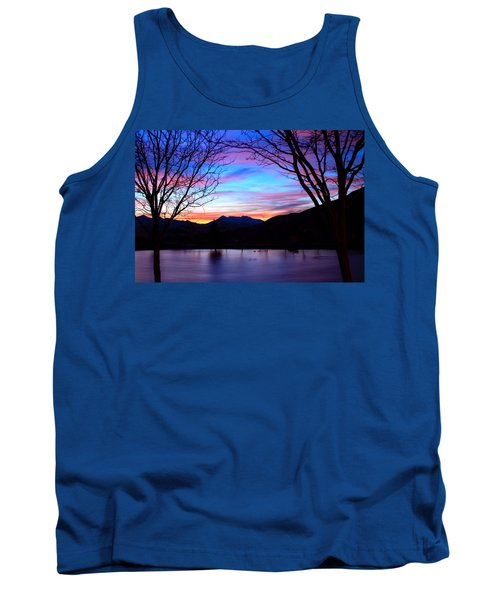 Rose Canyon Tank Top by Paul Marto