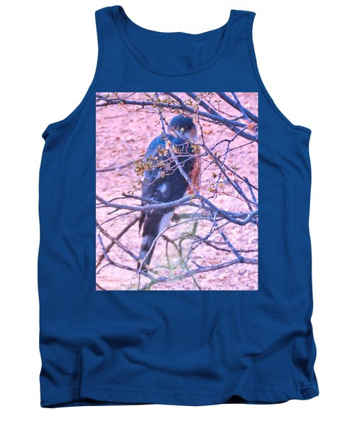 Sharp-shinned Hawk Hunting In The Desert 2 Tank Top