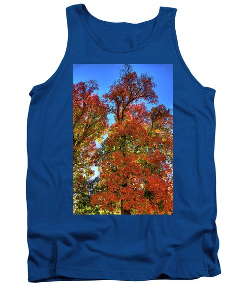 Tank Top featuring the photograph Backlit Autumn by David Patterson
