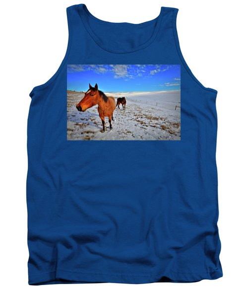Tank Top featuring the photograph Geldings In The Snow by David Patterson