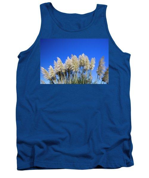 Pampas Grass, Cannon Beach, Oregon, Usa Tank Top