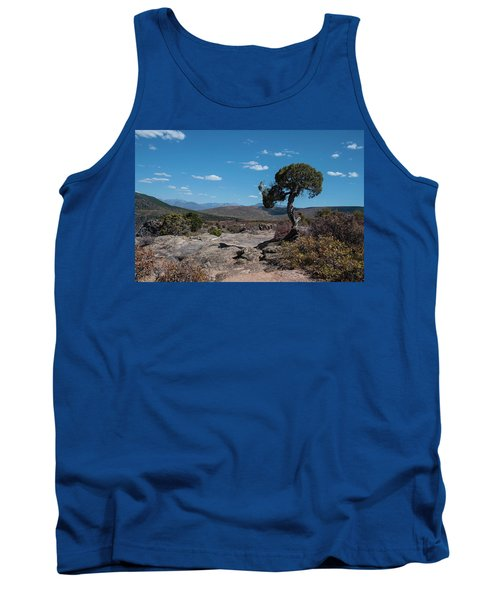 Pinyon Pine With North Rim In Background Black Canyon Of The Gunnison Tank Top