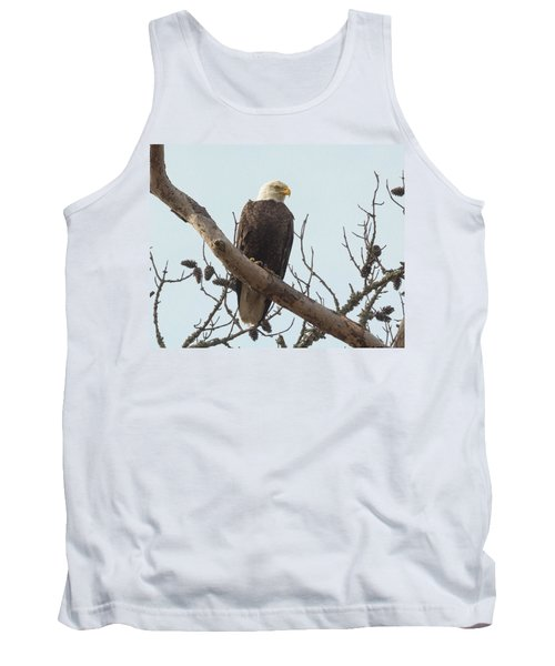 Resting Bald Eagle Tank Top