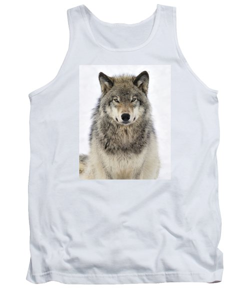 Timber Wolf Portrait Tank Top by Tony Beck