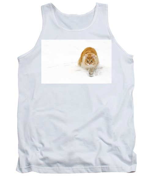 111230p310 Tank Top by Arterra Picture Library