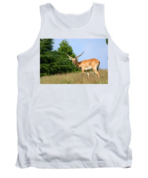 Antelope Tank Top