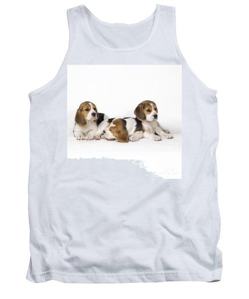 Beagle Puppies, Row Of Three, Second Tank Top