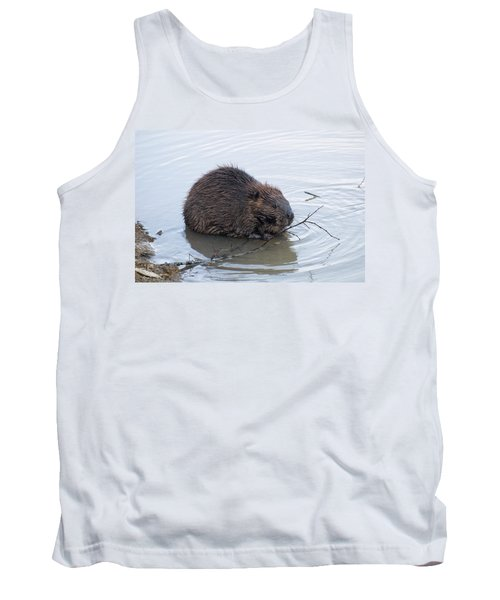 Beaver Chewing On Twig Tank Top by Chris Flees