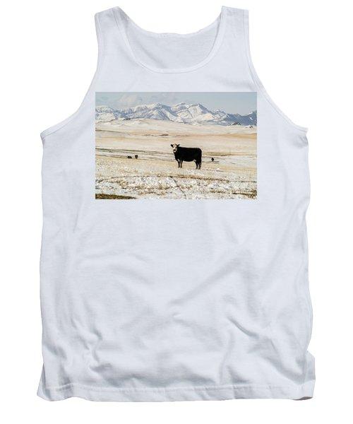 Black Baldy Cows Tank Top