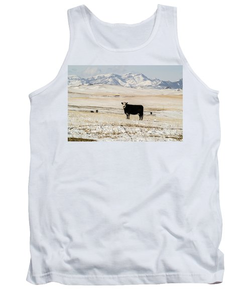 Black Baldy Cows Tank Top