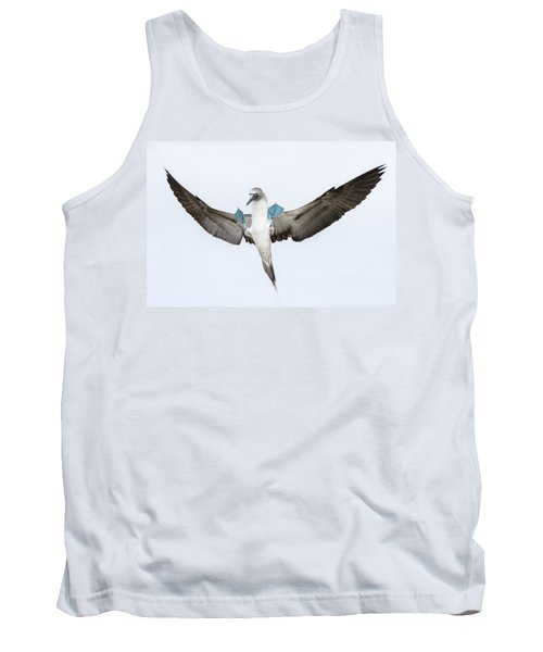 Blue-footed Booby Landing Galapagos Tank Top by Tui De Roy