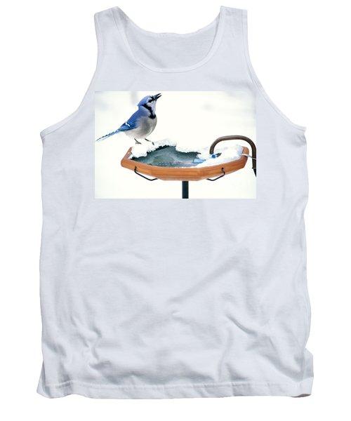 Blue Jay At Heated Birdbath Tank Top