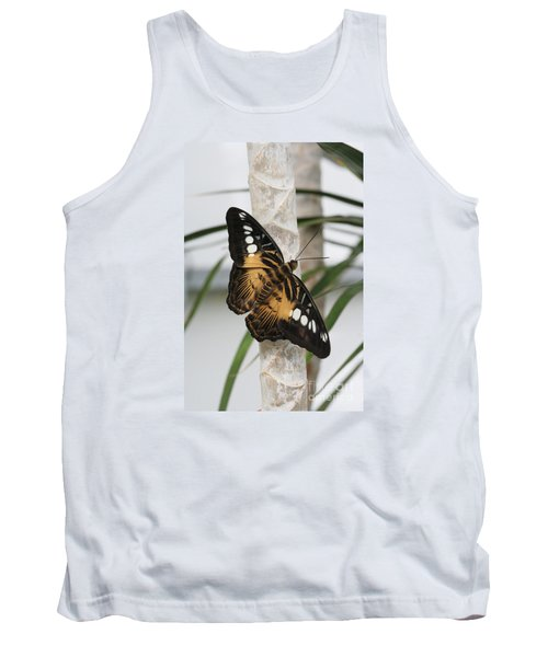 Brown Clipper Butterfly #2 Tank Top by Judy Whitton