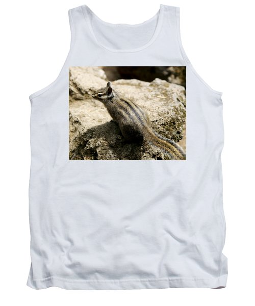 Chipmunk On A Rock Tank Top by Belinda Greb