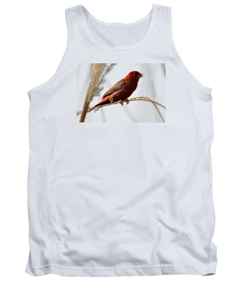 Colour Me Red Tank Top