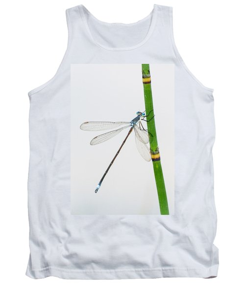 Damselfly On Horsetail Tank Top
