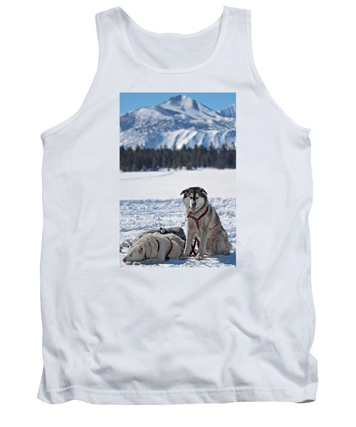 Dog Team Tank Top by Duncan Selby
