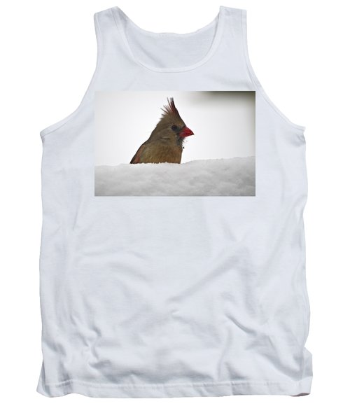 Snowy Peek-a-boo Tank Top