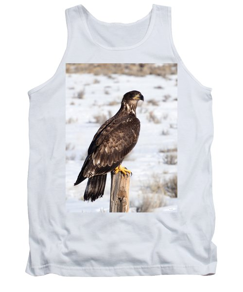 Golden Eagle On Fencepost Tank Top by Nadja Rider
